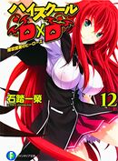 High School DxD Vol 12 Med.jpg